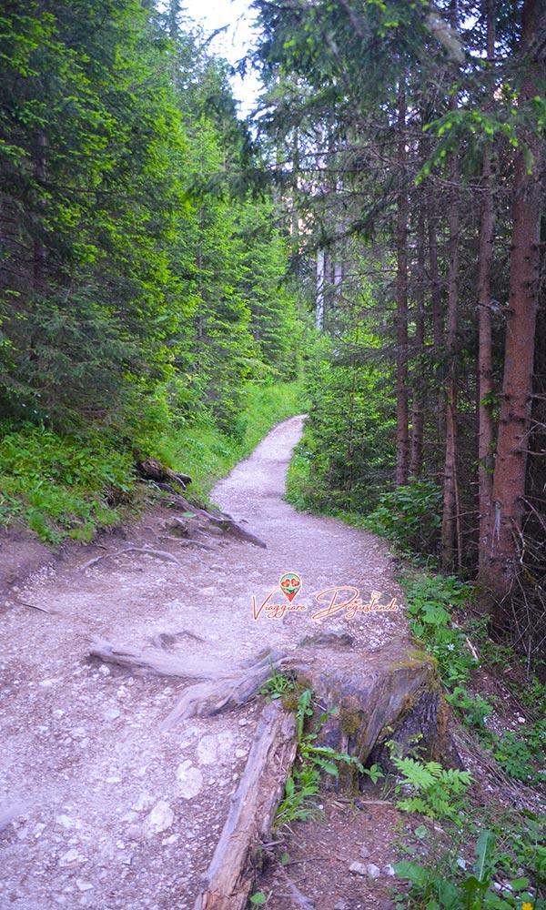 Sentiero Lago di Braies
